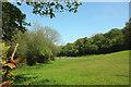 SX7348 : Meadow near Loddiswell station by Derek Harper