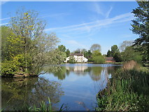 SJ7744 : Madeley Mill and Pool by David Weston