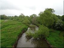 SJ5509 : The River Tern by JThomas