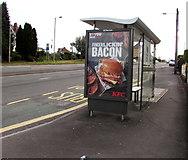 ST3090 : KFC advert on a Malpas Road bus shelter, Newport by Jaggery