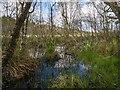 NH9358 : Loch Loy by valenta