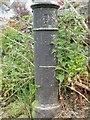 SH5772 : Adams Hydraulics Ltd York inscription on stench pipe, Bangor by Meirion