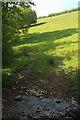 SX7248 : Sheep pasture below Reads Farm by Derek Harper