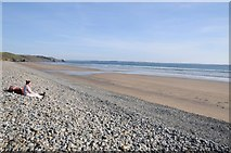 SM8421 : Newgale Sands by Philip Halling