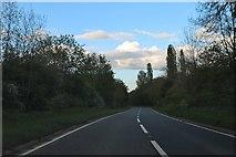 SO2956 : The A44, Kington by David Howard
