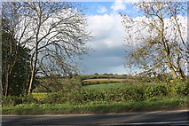 SP5860 : Fields by the A45, Newnham by David Howard