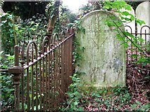 TG2408 : The grave of Thomas and Lucy Self by Evelyn Simak