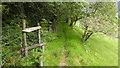 SN7078 : Footpath and stile in Cwm Rheidol by John Lucas