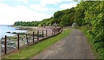 NT3194 : Fife Coastal Path, West Wemyss by Bill Kasman