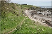 NO5000 : Fife Coastal Path by Richard Sutcliffe