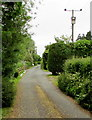 ST6092 : Line spur pole, Featherbed Lane, Oldbury-on-Severn  by Jaggery