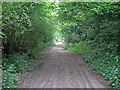 TQ6696 : Footpath nr Queens Park Country Park, Billericay by Roger Jones
