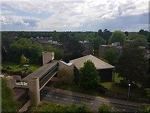 SE6250 : Chemistry Bridge and Derwent College by DS Pugh