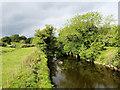 SD4947 : River Wyre by David Dixon