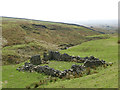 NY8446 : Ruined sheepfold in Middle Hope (2) by Mike Quinn