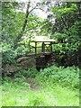 SE7390 : Stone footbridge, Lastingham by Gordon Hatton