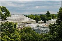 TQ1876 : Kew Gardens : Temperate House by Julian Osley