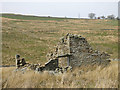 NY8446 : The ruins of Pry House in Middle Hope (4) by Mike Quinn