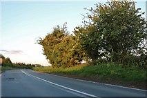 SO5158 : Worcester Road east of Leominster by David Howard
