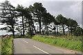 NO6852 : Sharp road bend  beside Lunan railway cutting by Andrew Diack