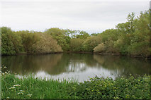 SP2195 : Lake near Kingsbury by Bill Boaden