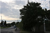 ST7172 : London Road, Wick by David Howard