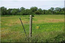 SP3103 : Electric fence and warning sign, Bampton, Oxon by P L Chadwick