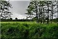 H4772 : Dark skies, Mullaghmore by Kenneth  Allen