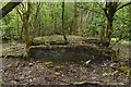 NS4760 : Brick ruin at former site of Craigielinn House by Lairich Rig