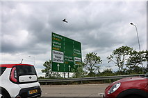 SP8933 : Sign on the A5, Fenny Stratford by David Howard