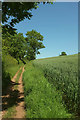 SX8854 : Bridleway near Higher Greenway by Derek Harper