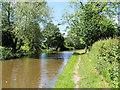 SJ3933 : Llangollen (Shropshire Union) Canal south of Ellesmere by David Dixon