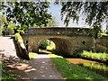 SJ4034 : Llangollen Canal, Bridge#58 at Ellesmere by David Dixon