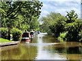SJ4034 : Llangollen Canal near Blackwater Meadow by David Dixon