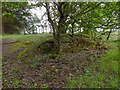 NS4760 : Craigielinn House: detail from southwestern ruin by Lairich Rig