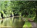 SJ4233 : Shropshire Union Canal (Llangollen Branch) by David Dixon