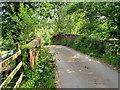 SJ4233 : Little Mill Bridge by David Dixon