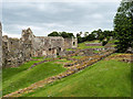 SJ5415 : Haughmond Abbey Remains by David Dixon