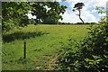 SX8755 : Greenway Walk to Lower Greenway by Derek Harper