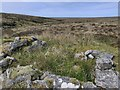 NB4552 : Shieling hut, Airighean Chatuil, Isle of Lewis by Claire Pegrum