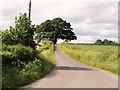 SJ5806 : Minor Road near Dryton by David Dixon