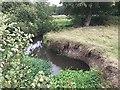 SP1866 : Meander on Tapster Brook, Preston Fields by Robin Stott