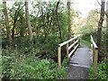 SE2641 : A footbridge in Golden Acre Park by Stephen Craven