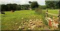 SX8755 : Drinking trough, Lower Greenway Farm by Derek Harper
