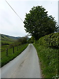SJ1131 : Up the valley towards Plas-criafol farm by Richard Law