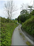 SJ1228 : Lane in the valley of the Afon Iwrch by Richard Law