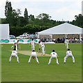 SK5566 : Clean bowled at Welbeck by John Sutton
