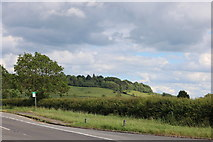 SP7117 : The A41, Westcott by David Howard