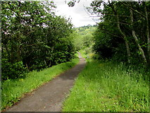 ST1599 : Path through Bargoed Woodland Park by Jaggery