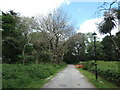 SX8961 : The grounds of Parkfield House, Paignton [3] by Christine Johnstone